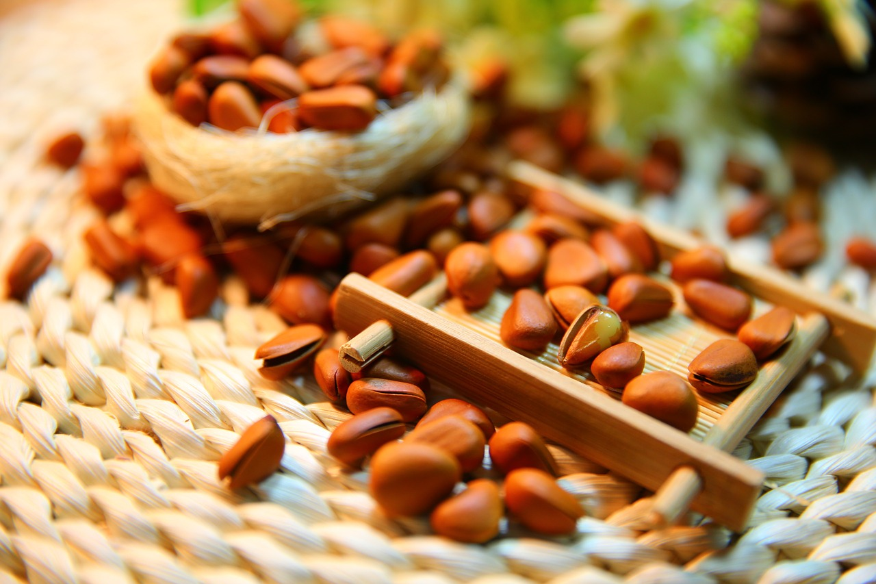 Pine Nut Shells Increase Physical Endurance