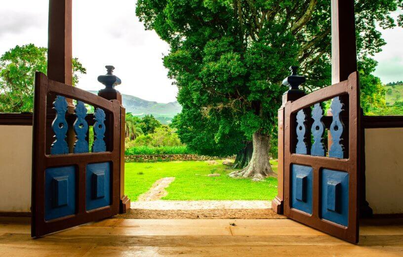 Views Of Greenery From Home, Work Help Reduce Harmful Cravings